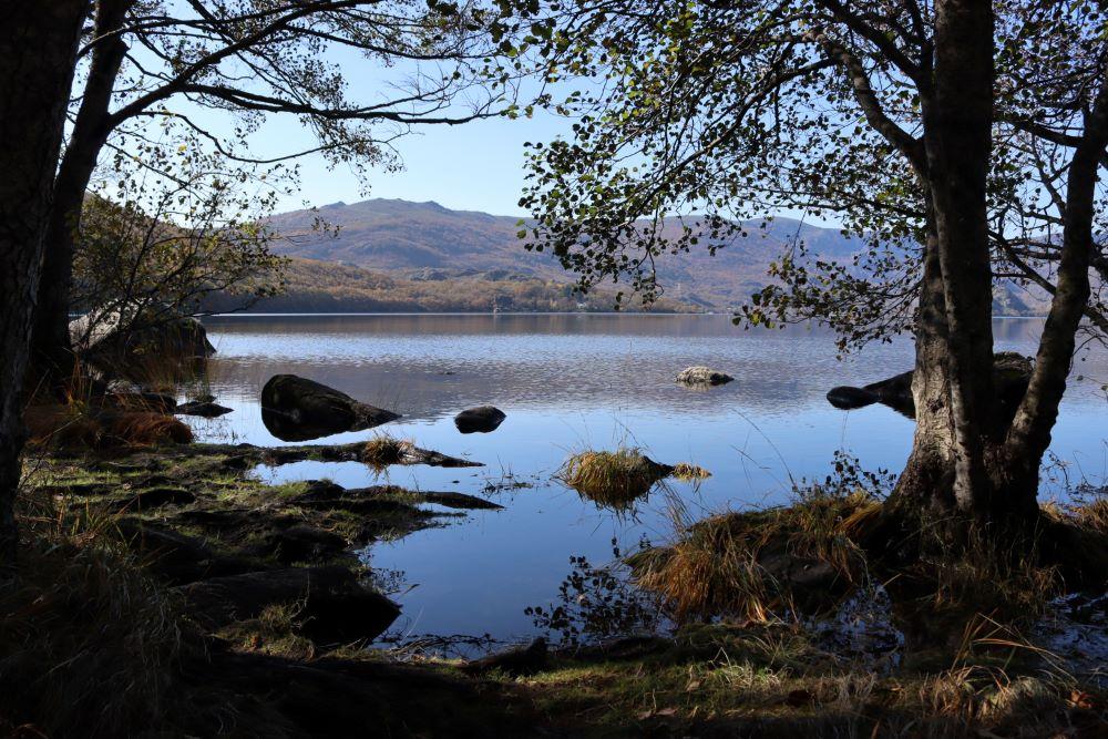 Lago de Sanabria behind trees and rocks